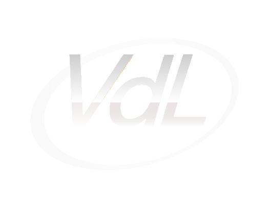 VDL FInances